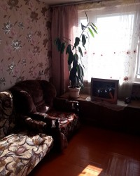 Горелово, Коммунаров 114